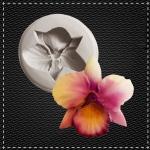 Орхідея №2