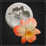 Орхідея №3